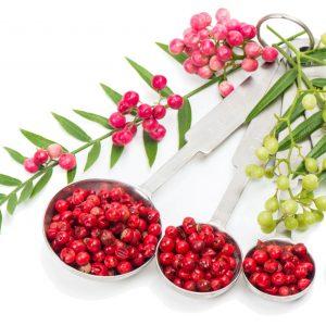 South American Pink Peppercorns